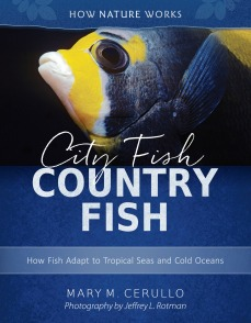 CityFishCountryFish Cover_06.cdr